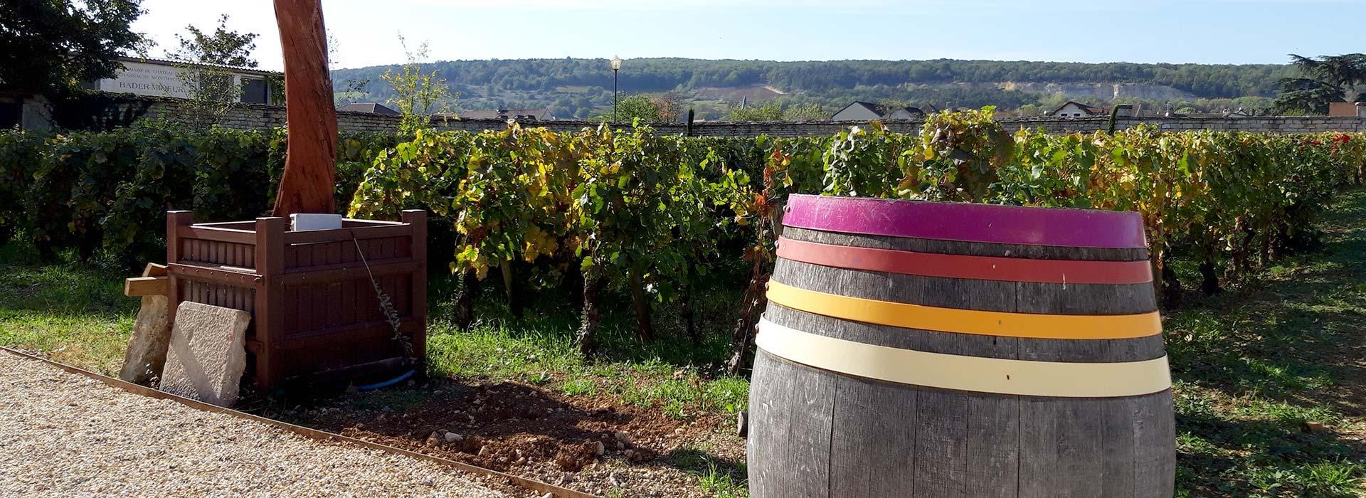 Visites guidées Bourgogne